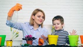 幼木的概念 家庭获得很多乐趣,当浇灌他们的被种植的花在夏天时