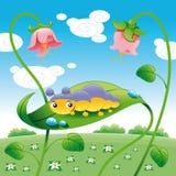 幼虫叶子 免版税库存图片