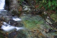 幽谷河在一个绿色水池打旋在北爱尔兰 免版税库存照片