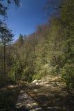 幽谷Burney足迹,吹的岩石, NC 库存照片