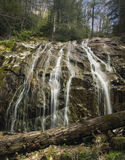 幽谷Burney足迹,吹的岩石, NC 免版税图库摄影