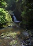 幽谷maye瀑布 库存照片