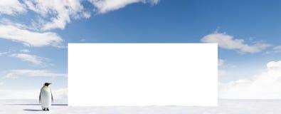 广告牌空白企鹅 免版税库存照片