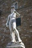 广场della的Signoria米开朗基罗的大卫在佛罗伦萨,意大利 库存图片