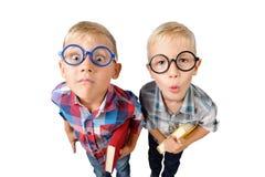 广角两个男孩学生特写镜头滑稽的画象衬衣的在玻璃在手上的拥抱书,看照相机,隔绝在w 免版税库存图片