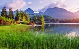 庄严山湖在国家公园高Tatra Strbske普莱索,斯洛伐克,欧洲 库存照片