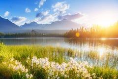 庄严山湖在国家公园高Tatra Strbske ples 库存图片