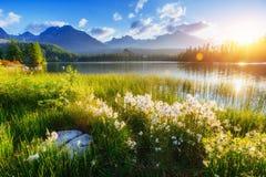 庄严山湖在国家公园高Tatra Strbske ples 免版税库存照片