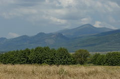 庄严山顶面长满与森林、成熟麦田和草沼地,中央巴尔干山, Stara Planina 免版税库存图片