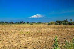 庄严山Etna,西西里岛 库存图片