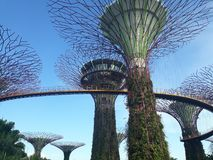 庄严看法@GardensbytheBay新加坡 库存照片