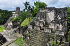 庄严蒂卡尔废墟,在危地马拉 库存照片