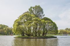 庄园的Tsaritsyno大察里津池塘 南区 莫斯科 莫斯科 库存照片