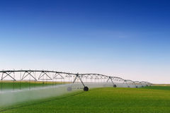 庄稼灌溉 免版税库存照片