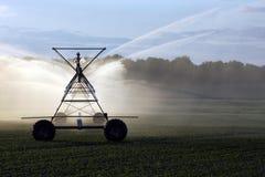 庄稼灌溉 免版税库存图片