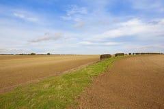 庄稼的耕种的农田 免版税图库摄影