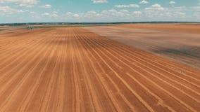 庄稼麦子或黑麦领域鸟瞰图与stook干草秸杆大包 收获农业农厂农村天线4k录影 股票录像