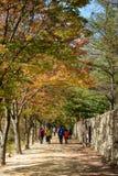 闻庆市,韩国- 2014年10月14日:mungyeongsaejae舞步看法  免版税库存照片