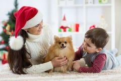 庆祝与毛茸的朋友的妇女和她的儿子圣诞节 母亲和孩子与狗狗 有小狗的俏丽的儿童男孩 免版税库存图片