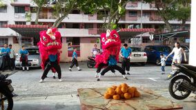 庆祝中国新年度 免版税库存图片