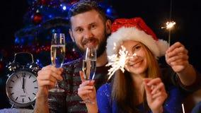 庆祝圣诞节或新年度的愉快的系列 股票录像