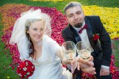 庆祝婚礼的新夫妇 免版税库存图片
