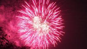 庆祝的明亮的五颜六色的烟花显示 图库摄影