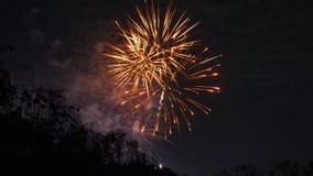 庆祝的明亮的五颜六色的烟花显示 库存照片