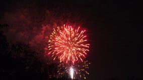 庆祝的明亮的五颜六色的烟花显示 免版税图库摄影