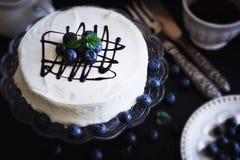 庆祝的蛋糕 库存图片