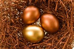庆祝的鸡蛋 库存图片