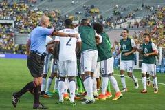 庆祝目标球员足球 免版税库存照片