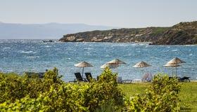床和秸杆伞在一个海滩由葡萄树在Bozcaada, 库存图片
