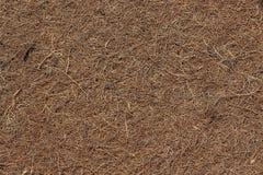 床垫的表面由干燥被按的椰子须根制成 Backgro 图库摄影