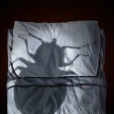 床铺臭虫恐惧 免版税图库摄影
