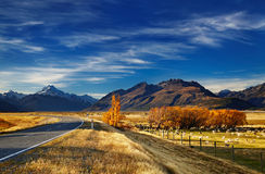 库克山,坎特伯雷,新西兰 免版税库存图片