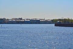 库图佐夫堤防在圣彼德堡,俄罗斯 免版税图库摄影
