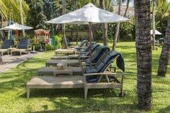 库塔海滩棕榈外套,有游泳池的豪华旅游胜地 巴厘岛印度尼西亚 免版税库存照片