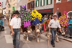 库夫施泰因/奥地利/提洛尔19 9月:在cattl的装饰的母牛 免版税库存照片