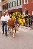 库夫施泰因/奥地利/提洛尔9月19日:有装饰的c的农夫 免版税库存照片