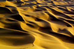 库姆塔格沙漠风景 免版税库存照片