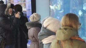 库尔斯克,俄罗斯- 2018年2月18日:人们看水族馆 股票录像