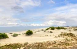 库尔斯沙嘴的沙丘 加里宁格勒 俄国 库存照片
