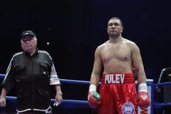 库布拉特Pulev拳击手 库存照片