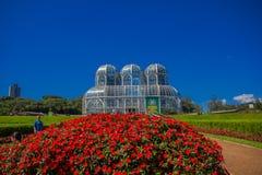 库里奇巴,巴西- 2016年5月12日:温室的好的看法,它是几何围拢的一个金属结构 库存照片