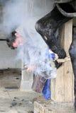 应用一双热的鞋子的铁匠 免版税库存图片