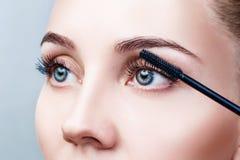 应用在睫毛的妇女染睫毛油有刷子的 免版税库存图片