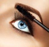 应用特写镜头的染睫毛油构成 图库摄影