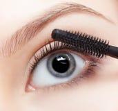 应用美丽的染睫毛油妇女 免版税库存图片