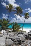 底下海湾,巴巴多斯,印度西部 免版税库存照片